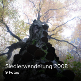 2008_00
